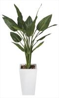 光触媒 光の楽園ストレチアW1.3m【インテリアグリーン 人工観葉植物】(131c450)