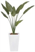 光触媒 光の楽園ストレチア 1.2m【インテリアグリーン 人工観葉植物】(132e330)