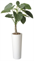 光触媒 光の楽園アートくわず芋1.8m【インテリアグリーン 人工観葉植物】(134f900)
