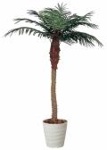 光触媒 光の楽園フェニックス 2.1m【インテリアグリーン 人工観葉植物】(138a500)