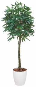 光触媒 光の楽園パキラ 高さ 1.6m【インテリアグリーン 大型 人工観葉植物】(139c500)