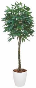 光触媒 光の楽園パキラ 高さ 2.0m【インテリアグリーン 大型 人工観葉植物】(140f700)