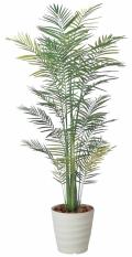 光触媒 光の楽園トロピカルアレカパーム 2.1m【インテリアグリーン 人工観葉植物】(142f530)