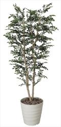 光触媒 光の楽園トネリコ 1.8m【インテリアグリーン 人工観葉植物】(146c450)