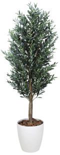 光触媒 光の楽園 オリーブ 高さ 1.6m 【インテリアグリーン 人工観葉植物】 (148g580)