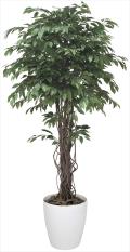 光触媒 光の楽園ベンジャミンリアナ 高さ 1.8m【インテリアグリーン 大型 人工観葉植物】(152f600)