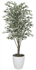光触媒 光の楽園ベンジャミンツリー斑入り 1.8m【インテリアグリーン 人工観葉植物】(154c480)