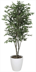 光触媒 光の楽園ベンジャミンツリー 高さ 1.6m【インテリアグリーン 大型 人工観葉植物】(156c380)