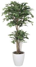 光触媒 光の楽園 トロピカルベンジャミン 高さ 1.6m 【インテリアグリーン 人工観葉植物】 (161g450)