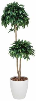 光触媒 光の楽園ベンジャミンダブル 高さ 1.8m【インテリアグリーン 大型 人工観葉植物】(169a350)
