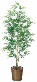 光触媒 光の楽園青竹 1.8m【インテリアグリーン 人工観葉植物】(180a300)