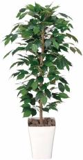 光触媒 光の楽園フィカスベンジャミン 1.2m【インテリアグリーン 人工観葉植物】(189a170)