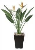 光触媒 光の楽園ストレチアS花付 1.0m【インテリアグリーン 人工観葉植物】(195c300)
