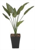 光触媒 光の楽園ストレチア 1.1m【インテリアグリーン 人工観葉植物】(196c180)