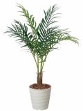 光触媒 光の楽園アレカパーム 1.15m【インテリアグリーン 人工観葉植物】(197a180)