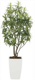 光触媒 光の楽園 フレッシュドラセナW 高さ 1.8m 【インテリアグリーン 人工観葉植物】 (2007a800)