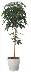 光触媒 光の楽園 デザインパキラ 高さ 1.6m 【インテリアグリーン 大型 人工観葉植物】 (2008a260)