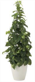 光触媒 光の楽園 フレッシュポトス 高さ 1.2m 【インテリアグリーン 人工観葉植物】 (2023a250)