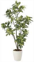 光触媒 光の楽園 シェフレラ 高さ 1.15m 【インテリアグリーン 人工観葉植物】 (2027a180)