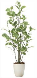 光触媒 光の楽園 ポリシャス 高さ 1.15m 【インテリアグリーン 人工観葉植物】 (2028a180)