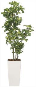 光触媒 光の楽園 シェフレラ 高さ 1.3m 【インテリアグリーン 人工観葉植物】 (2029a200)