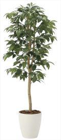 光触媒 光の楽園 アルデシア(万両) 高さ 1.3m 【インテリアグリーン 人工観葉植物】 (2033a200)