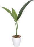 光触媒 光の楽園 トラベラーズパーム 高さ 1.1m 【インテリアグリーン 人工観葉植物】 (205g120)