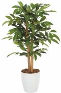 光触媒 光の楽園アルデシア 90【インテリアグリーン 人工観葉植物】(208a100)