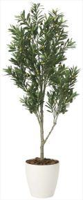 光触媒 光の楽園 オリーブツリー 高さ 1.65m 【インテリアグリーン 人工観葉植物】 (2096a400)