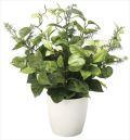 光触媒 光の楽園 ミックスポトス 【インテリアグリーン 人工観葉植物】 (2102a60)