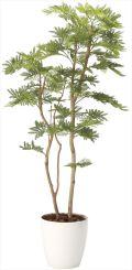 光触媒 光の楽園 ねむの木 高さ 1.6m 【インテリアグリーン 大型 人工観葉植物】 (2105a360)