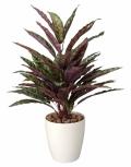 光触媒 光の楽園ピーコック【インテリアグリーン 人工観葉植物】(215a80)