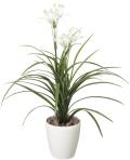 光触媒 光の楽園ユッカ花付【インテリアグリーン 人工観葉植物】(222a80)