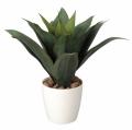 光触媒 光の楽園ドラセナ【インテリアグリーン 人工観葉植物】(224a50)