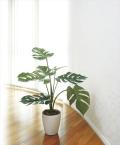 光触媒 光の楽園モンステラ75【インテリアグリーン 人工観葉植物】(225e90)