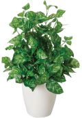 光触媒 光の楽園ピーコック【インテリアグリーン 人工観葉植物】(237a40)