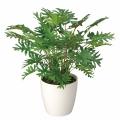 光触媒 光の楽園スプリット【インテリアグリーン 人工観葉植物】(241a50)