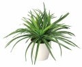 光触媒 光の楽園ドラセナ【インテリアグリーン 人工観葉植物】(245a40)