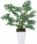 光触媒 光の楽園クッカバラ【インテリアグリーン 人工観葉植物】(253a35)