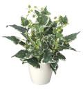 光触媒 光の楽園 ホーランドアイビーL 【インテリアグリーン 人工観葉植物】 (254g50)