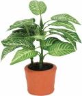 光触媒 光の楽園カントリーゼブラ【インテリアグリーン 人工観葉植物】(264a10)