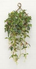 光触媒 光の楽園壁掛ローレル【インテリアグリーン 人工観葉植物】(270a50)