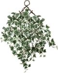 光触媒 光の楽園壁掛班入アイビー【インテリアグリーン 人工観葉植物】(274a30)