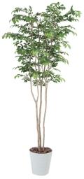 光触媒 光の楽園マウンテンアッシュ2.1m【インテリアグリーン 人工観葉植物】(351a550)