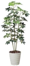 光触媒 光の楽園カポック斑入り1.5m【インテリアグリーン 人工観葉植物】(355a200)