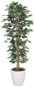 光触媒 光の楽園ベンジャミンスリム 高さ 1.8m【インテリアグリーン 大型 人工観葉植物】(357a330)