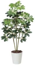 光触媒 光の楽園カポック斑入り1.2m【インテリアグリーン 人工観葉植物】(371a150)
