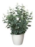 光触媒 光の楽園ユーカリ【インテリアグリーン 人工観葉植物】(385a50)