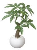 光触媒 光の楽園パキラポット【インテリアグリーン 人工観葉植物】(386a30)