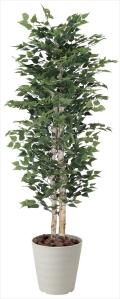 光触媒 光の楽園白樺 1.8m【インテリアグリーン 人工観葉植物】(402c700)